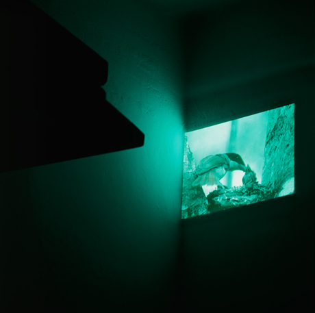 Corner, video projection, 2006